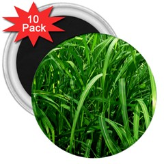 Grass 3  Button Magnet (10 Pack) by Siebenhuehner