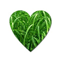 Grass Magnet (heart)