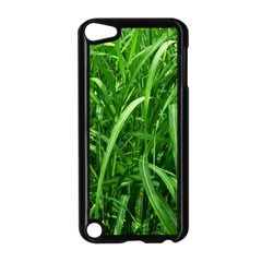 Grass Apple Ipod Touch 5 Case (black)