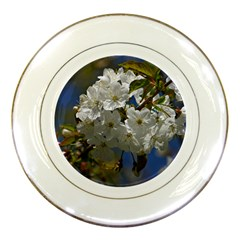 Cherry Blossom Porcelain Display Plate by Siebenhuehner