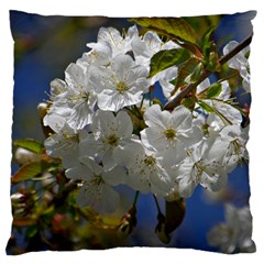 Cherry Blossom Large Cushion Case (two Sided)  by Siebenhuehner