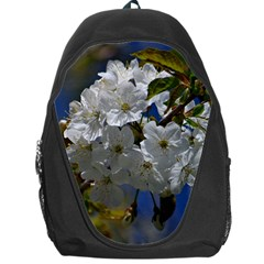 Cherry Blossom Backpack Bag