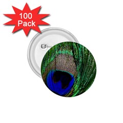 Peacock 1 75  Button (100 Pack) by Siebenhuehner