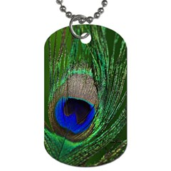 Peacock Dog Tag (one Sided) by Siebenhuehner