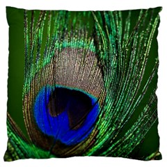 Peacock Large Cushion Case (two Sided)