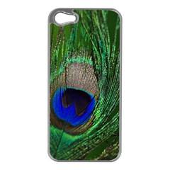 Peacock Apple Iphone 5 Case (silver) by Siebenhuehner