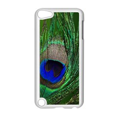 Peacock Apple Ipod Touch 5 Case (white) by Siebenhuehner