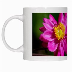 Flower White Coffee Mug by Siebenhuehner