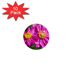 Flower 1  Mini Button Magnet (10 Pack) by Siebenhuehner