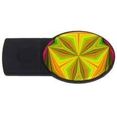 Abstract 4gb Usb Flash Drive (oval) by Siebenhuehner
