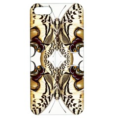 Butterfly Art Ivory&brown Apple Iphone 5 Hardshell Case With Stand by BrilliantArtDesigns