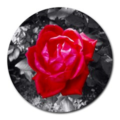 Red Rose 8  Mouse Pad (round) by jotodesign