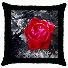 Red Rose Black Throw Pillow Case by jotodesign