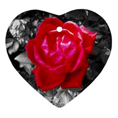 Red Rose Heart Ornament (two Sides)