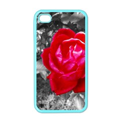 Red Rose Apple Iphone 4 Case (color) by jotodesign