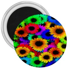 Colorful Sunflowers 3  Button Magnet by StuffOrSomething