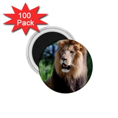 Regal Lion 1 75  Button Magnet (100 Pack) by AnimalLover