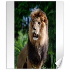 Regal Lion Canvas 20  X 24  (unframed) by AnimalLover