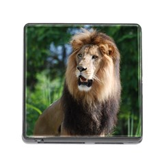 Regal Lion Memory Card Reader With Storage (square) by AnimalLover