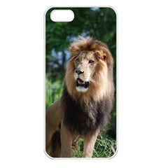 Regal Lion Apple Iphone 5 Seamless Case (white) by AnimalLover
