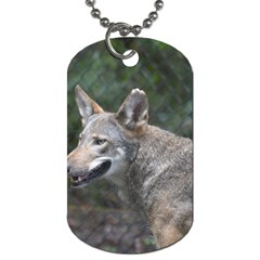 Shdsc 0417 10502cow Dog Tag (two Sided)  by AnimalLover