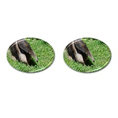Giant Anteater Cufflinks (oval)