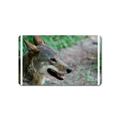 Red Wolf Magnet (name Card) by AnimalLover