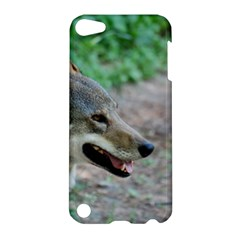 Red Wolf Apple Ipod Touch 5 Hardshell Case by AnimalLover