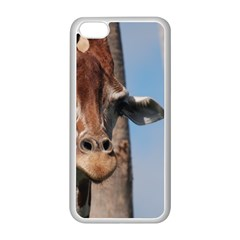 Cute Giraffe Apple Iphone 5c Seamless Case (white) by AnimalLover