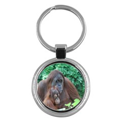 Orangutan Family Key Chain (round) by AnimalLover
