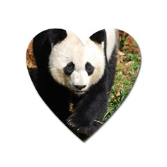 Giant Panda Magnet (heart) by AnimalLover