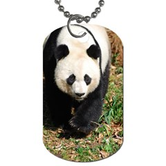 Giant Panda Dog Tag (two Sided)  by AnimalLover