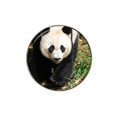 Giant Panda Golf Ball Marker 4 Pack (for Hat Clip) by AnimalLover
