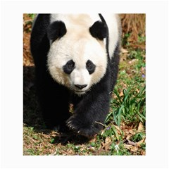 Giant Panda Canvas 20  X 24  (unframed) by AnimalLover