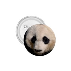 Adorable Panda 1 75  Button by AnimalLover