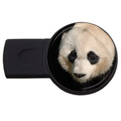 Adorable Panda 2gb Usb Flash Drive (round) by AnimalLover