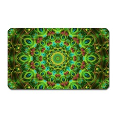 Peacock Feathers Mandala Magnet (rectangular) by Zandiepants