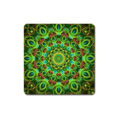 Peacock Feathers Mandala Magnet (square) by Zandiepants