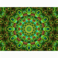 Peacock Feathers Mandala Canvas 12  X 16  (unframed) by Zandiepants
