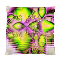 Raspberry Lime Mystical Magical Lake, Abstract  Cushion Case (two Sided)  by DianeClancy
