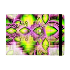 Raspberry Lime Mystical Magical Lake, Abstract  Apple Ipad Mini Flip Case by DianeClancy
