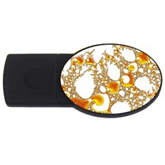 Special Fractal 04 Orange 2gb Usb Flash Drive (oval) by ImpressiveMoments