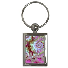 Raspberry Lime Delight, Abstract Ferris Wheel Key Chain (rectangle) by DianeClancy