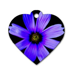 Purple Bloom Dog Tag Heart (two Sided) by BeachBum