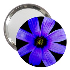 Purple Bloom 3  Handbag Mirror by BeachBum