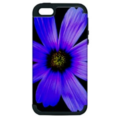 Purple Bloom Apple Iphone 5 Hardshell Case (pc+silicone)