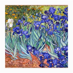 Vincent Van Gogh Irises Glasses Cloth (medium, Two Sided) by MasterpiecesOfArt
