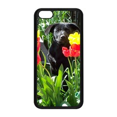 Black Gsd Pup Apple Iphone 5c Seamless Case (black) by StuffOrSomething