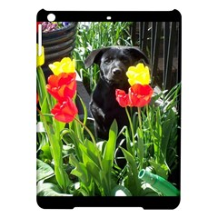 Black Gsd Pup Apple Ipad Air Hardshell Case by StuffOrSomething