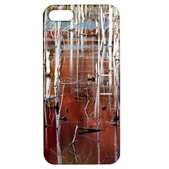 Automn Swamp Apple Iphone 5 Hardshell Case With Stand by cgar